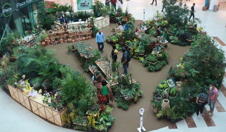 Onda verde cresce no RioMar